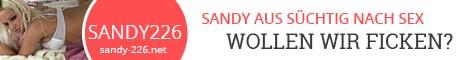 sandy-226.net